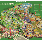 Nothing Compares to the San Diego Zoo