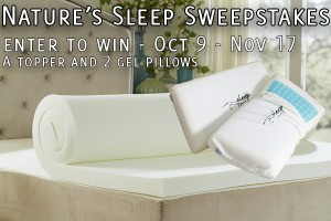 No More Cricks in the Neck…Gel Pillow and Topper Giveaway!