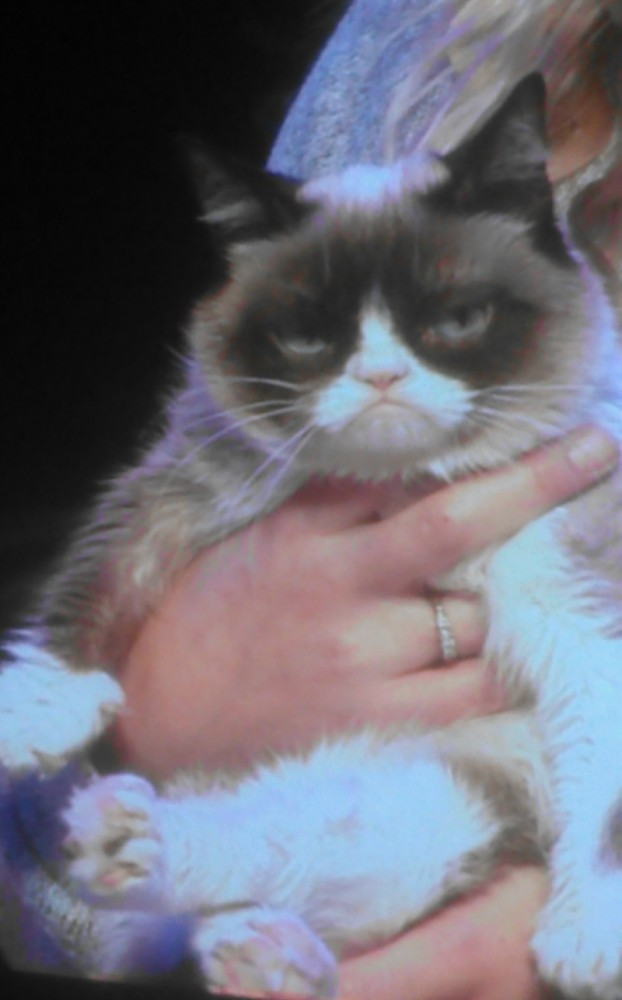 Disney Social Media Moms Celebration Disneyland California Grumpy Cat